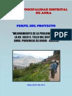 Perfil Av. Julio c. Tello (1)