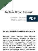 Anatomi Organ Endokrin Baru