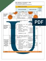 Rubrica Analitica y de Evaluacion 100105