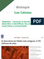 Las Células - 10 Del 4 7mo