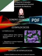 GENERO ESTAFILOCOCO