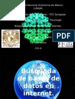 Búsqueda de Bases de Datos en Internet