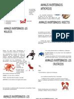 Guia Ciencias Naturales Invertebrados 1