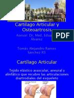 Biomecanica Del Cartilago Articular