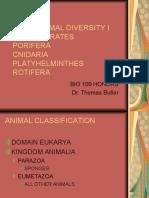 Lab 6 Animal Diversity i