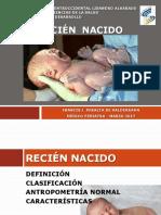 Clase 3. Recien Nacido - Presentacion