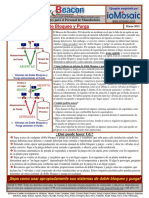 2012-03-Beacon-Spanish-s doble bloqueo y purga.pdf
