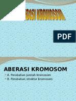ABERASI KROMOSOM 7