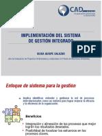 implementacion del sistema de gestion integrado