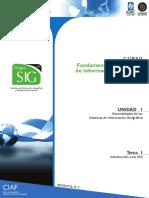 introduccion_sig.pdffundamentosdeinformaciongeografica.pdf
