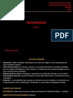 TP1-Apuntes.pdf