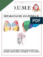 SEGMENTACION BRONCOPULMONAR, HEPATICA, ARTERIA MESENTERICA SUPERIOR Y VENA PORTA.pdf