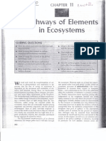 11. Pathways of Elements in Ecosystems