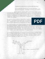 Medición de elementos individuales (Dendrometría).pdf