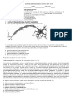 Examen Sistema Nervioso Grado Octavo Iete 2017