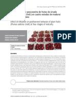 Comportamiento Poscosecha de Frutos de Ciruela en Cuatro Estados de Madurez Tratados Con Etileno