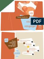 VIDEOJUEGOS.pdf
