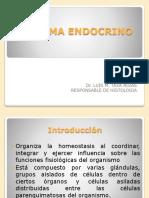 Clase 07 Sistema Endocrino