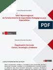 DIA 1 - Organizacion Curricular CTA_.pdf