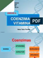 Coenzimas y Vitaminas