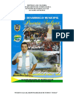 Diagnostioco PLAN_DE_DESARROLLO Puerto Salgar