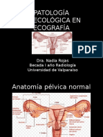 cavidadpelvianafinal-150701032133-lva1-app6891.ppt