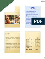 Lipid Dan Lemak