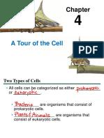 04_Lecture_Presentation(1)-1.pdf