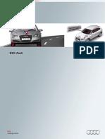 SSP 475 ESC Systems Audi
