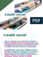 audit social.pdf