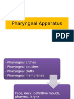 Pharyngeal Apparatus