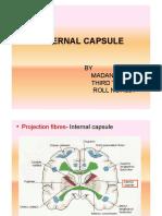 Internal Capsule.pptx