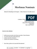 Morfemas Nominais