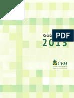 Relatorio Anual CVM 2013