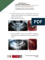 protocolo-7.pdf