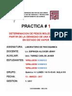 Modelo de Informe 1-2017