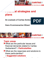 Financial Strategies and Plans Ppt-Alt Caritas Switzerland