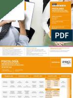 Malla Psicologia Mencion Clinica o Organizacional