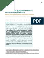 109-255-1-PB.pdf