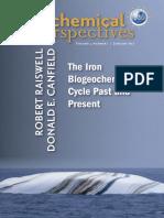 The Iron Biogeochemical Cycle.pdf