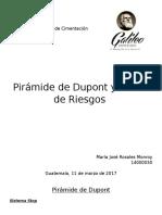 Dupont y Matriz de riesgo .docx