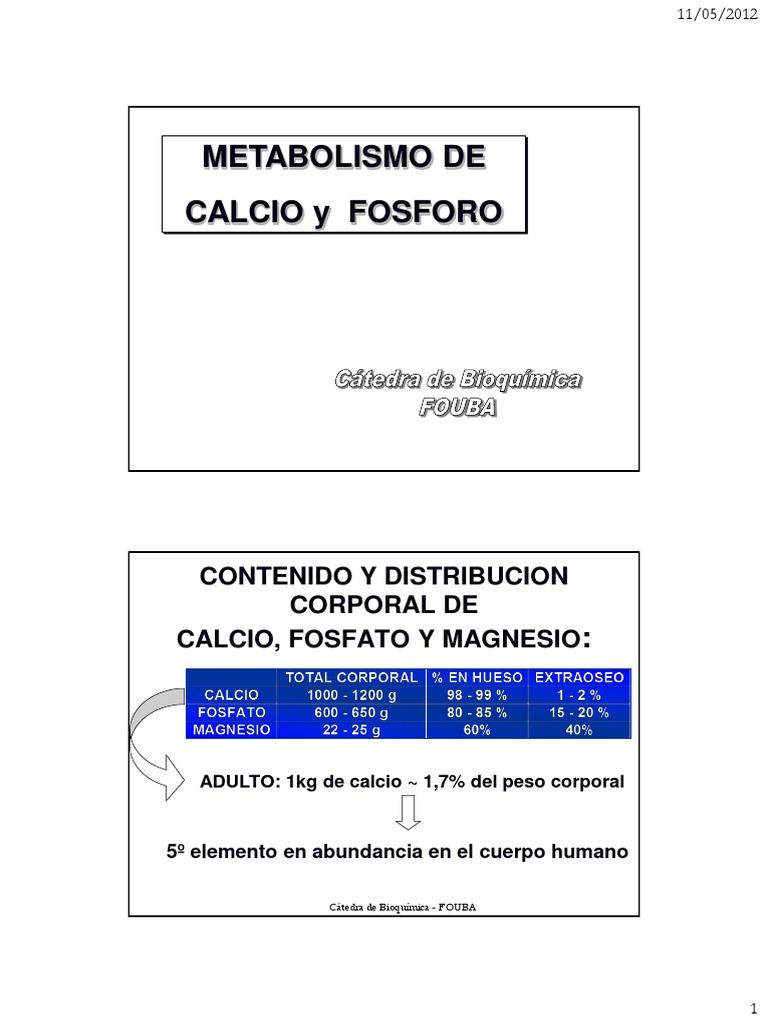 metabolismo del magnesio en el cuerpo humano