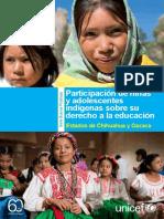 BP Participacion Indigena