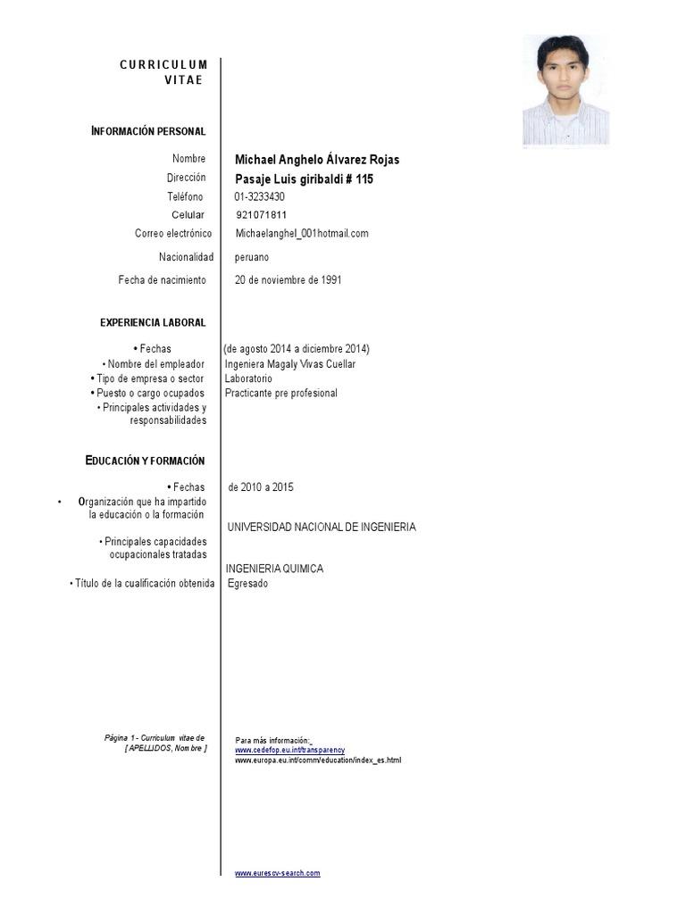 786147481) Cv Modelo Europeo