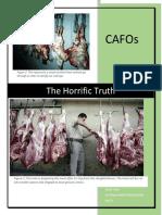 cafo essay pdf