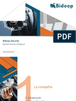 Bidoop Security - Pragsis