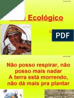 Xote Ecologico Luiz Gonzaga