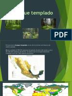Bosque templado.pptx