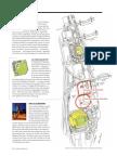 04-03-16.UM.P.82.pdf