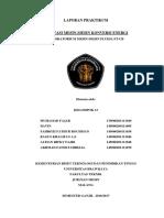 Laporan Kelompok 13 Fluida